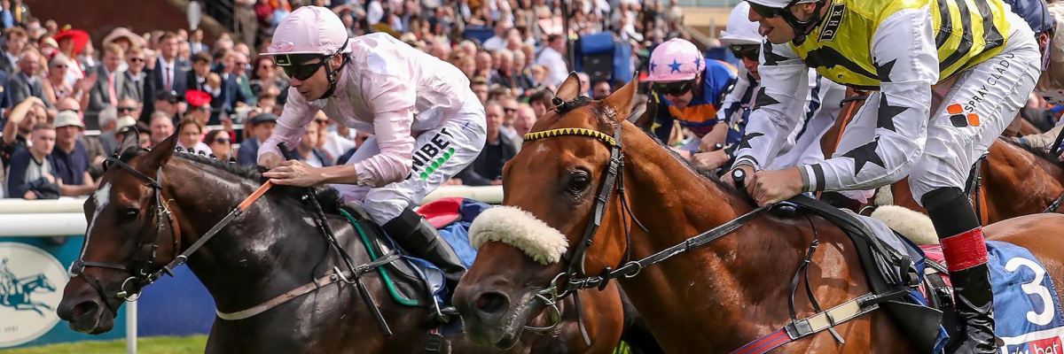 Dakota Gold : Sky Bet And Symphony Group Handicap at York August 2019